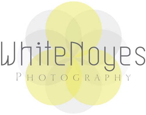 WhiteNoyes Photography Primary Logo